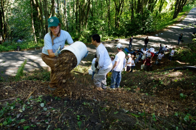 Teamwork towards a healthy forest and a liveable city.  Photo by Ben Scott-Killian.