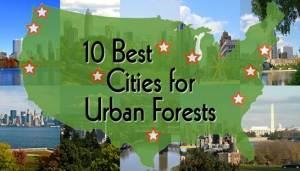 10bestcitiesforurbanforests