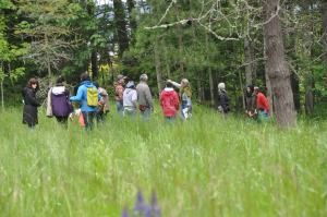 Native Plant ID Walk, Northwest Native Plant Garden